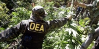 More Drug War History in the Making: The U.S. House Votes to Weaken the DEA and Support Medical Pot